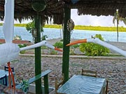 The restaurant Natureza Viva is located in Fortim, at the Jaguaribe River bank